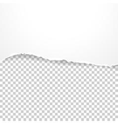 Torn paper banner on transparent background vector