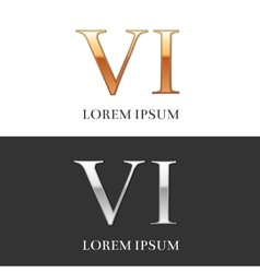 6 VI Luxury Gold and Silver Roman numerals sign vector image vector image