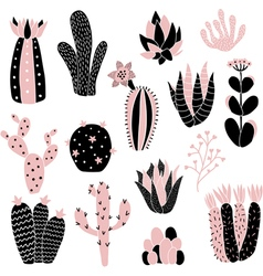 pink cacti vector image vector image