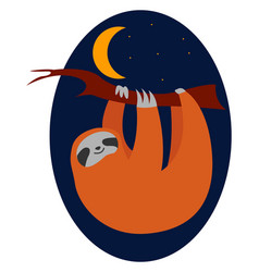 sleeping sloth on white background vector image