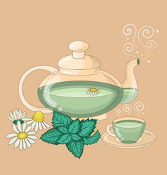 Teapot and cup mint and camomile tea vector