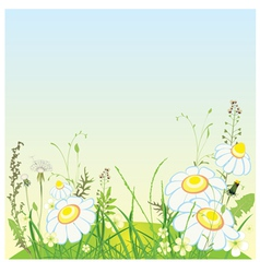 Green landscape flowers and grass meadow vector image
