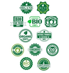 Natural and bio labels vector image vector image