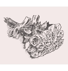 Bouquet of roses with ribbon hand drawn sketch vector image vector image