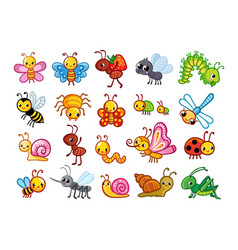 Big set with cute insects on a white vector