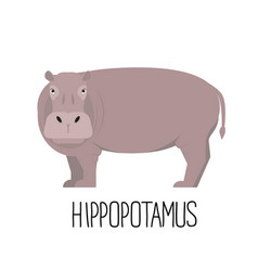 Cartoon cute hippopotamus flat vector