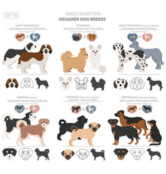 Designer dogs crossbreed hybrid mix pooches vector