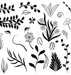 Flowers and leaf elements set vector