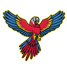 happy cartoon scarlett macaw parrot vector image