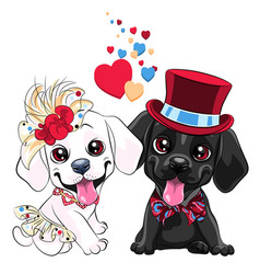 lovers cute labrador retriever dogs vector image