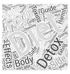 Body cleansing detox diet guide when word cloud vector
