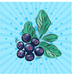 blueberry twig with green leaves on a blue vector image