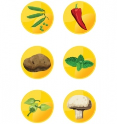 icon veggies vector image