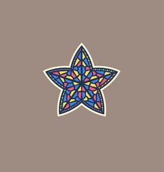 A multi-colored star vector