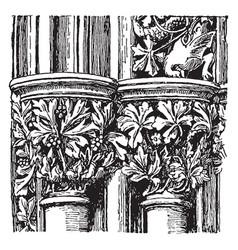 Capitals member vintage engraving vector