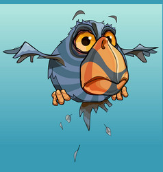 Cartoon flying astonished unusual bird with a vector