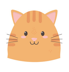 cute cat face cartoon icon vector image