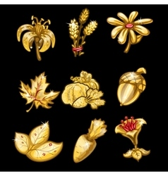 Golden set of flowers leaves and vegetables vector
