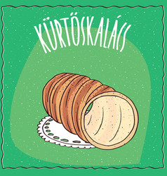 Hungarian spit cake known as kurtosh kalach vector