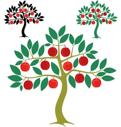 Peach tree vector image