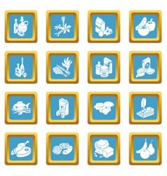 shop navigation foods icons set sapphirine square vector image