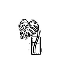 palm sprout in a glass of water sketch icon vector image vector image