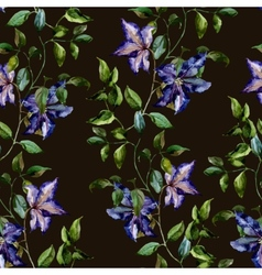 Clematis flower pattern vector