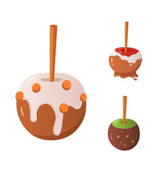 Sweet caramel and chocolate candy apple set vector