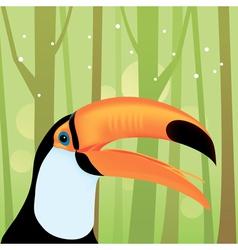 toucan bird at the jungle vector image
