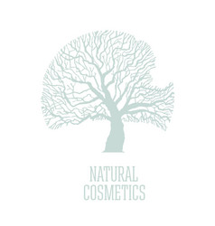 tree crown conceptual logotype eco product natural vector image
