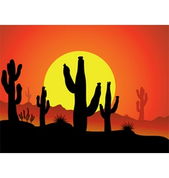 cactus background vector image vector image
