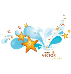 water spray and sea-stars vector image vector image