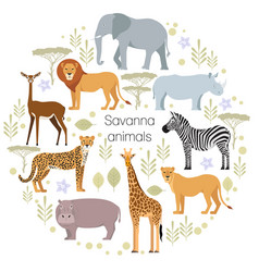 African animals elephant rhino giraffe cheetah vector