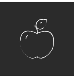 Apple icon drawn in chalk vector image