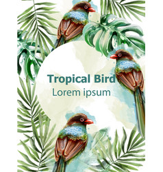 colorful birds tropic card watercolor with vector image