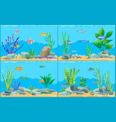 Colorful cartoon aquarium fishes set promo poster vector
