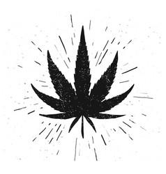 hand drawn marijuana leaf grunge style cannabis vector image