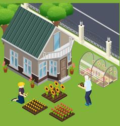 pensioners garden work isometric vector image