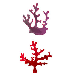 Set of watercolor seaweed and corals isolated vector