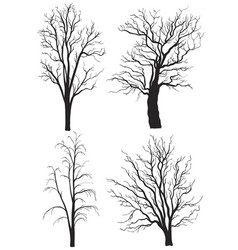 set trees without leaves silhouettes vector image