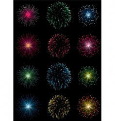 12 fireworks vector image