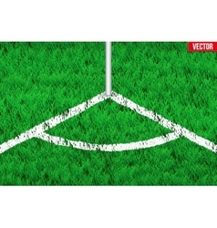 White angular lines on grass field vector image