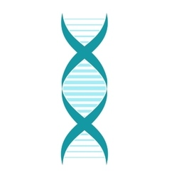DNA and molecule sign vector image vector image
