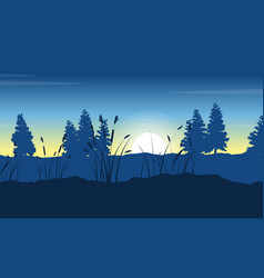Silhouette of spruce on hill landscape at morning vector