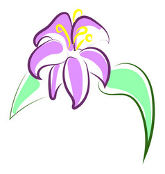 beautiful purple flower on white background vector image