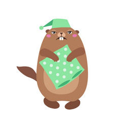 Groundhog holding a pillow flat t vector