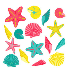 Seashells set design for holiday greeting card vector