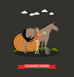 Cleaning horse in flat style vector