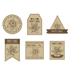 Craft labels with daffodil vector