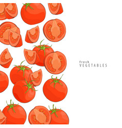 fresh tomatoes background vector image